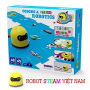 Robot mầm non Coding & STEAM Robotics